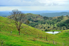 Scenic Drive in Maleny, northern Brisbane Stock Photography
