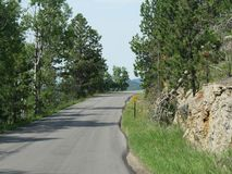 Scenic drive at Needle\'s Highway, South Dakota. Scenic drive along a winding sloping road at Needles Highway in South Dakota stock photos