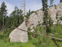 Scenic drive at Needle\'s Highway, South Dakota. Close up of granite rock formations at Needles Highway in South Dakota royalty free stock photography