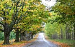 Scenic Drive Way Stock Image