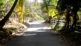 A scenic drive through the windward side of bequia stock video footage