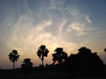 Scenic dusk evening. With palm trees at Sikandra Royalty Free Stock Image