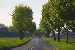 Scenic empty countryside road surrounded by trees in day . france. Scenic empty countryside road surrounded by trees in day Stock Photos