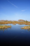 Scenic Everglades Royalty Free Stock Photos