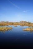 Scenic Everglades Royalty Free Stock Photos