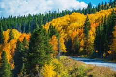 Scenic Fall Colorado Road. Autumn in Colorado Rocky Mountains Stock Photography