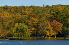 Scenic fall landscape in the Carmel  NY . Royalty Free Stock Photo