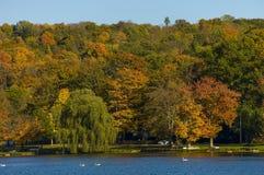 Scenic fall landscape in the Carmel  NY . Royalty Free Stock Photo