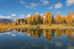 Autumn Reflection in the Tetons Royalty Free Stock Image