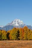 Scenic Fall Landscape Stock Photos