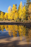 Scenic Fall Reflection Stock Photo
