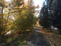 Scenic fall walk at the park stock photos