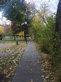 Scenic fall walk at the park royalty free stock photo