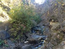 Scenic fall walk at Peterson creek Royalty Free Stock Photography