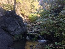 Scenic fall walk at Peterson creek Stock Photos