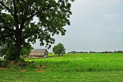 Scenic Farm Royalty Free Stock Images