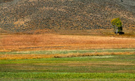 Scenic farm landscape Royalty Free Stock Images