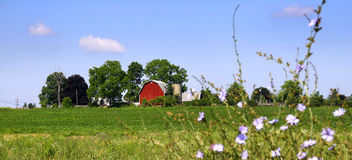 Scenic farm landscape Stock Images