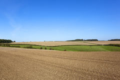 Scenic farmland in autumn Royalty Free Stock Image