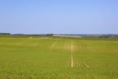Scenic farmland Stock Photos