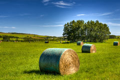 Scenic Farmland Stock Photo