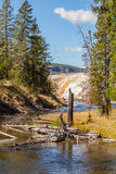 Scenic Firehole River Stock Images