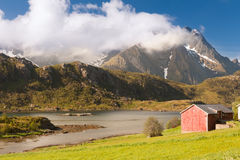 Scenic fjord on Lofoten islands with typical Royalty Free Stock Photo