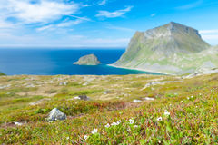 Scenic fjord on Lofoten islands with typical Stock Photos