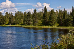 Scenic forest. Tranquil scene of blue sky with lake and forest royalty free stock photography