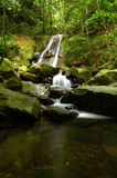 Scenic forest waterfall zoomed out. Peaceful, extended exposure photo of a forest waterfall Royalty Free Stock Images