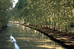Scenic France, Canal du Midi. First signs of autumn on the tree lined canal Canal du Midi at Capestang, Herault, France stock photo