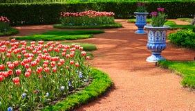 Scenic garden in spring, Peterhof Royalty Free Stock Images