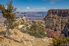Scenic Grand Canyon Landscape Royalty Free Stock Images