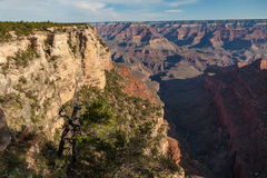 Scenic Grand Canyon National Park Stock Images
