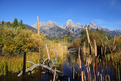 Scenic Grand Tetons Royalty Free Stock Photography