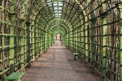 Scenic green arcs in Summer Garden Saint Petersburg.  Royalty Free Stock Photography