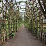 Scenic green arcs in Summer Garden Saint Petersburg.  Royalty Free Stock Photo