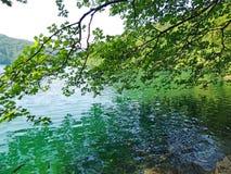 Scenic View inside Plitvice National Park. Beautiful nature at Plitvice National Park Stock Photo