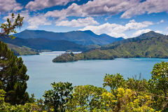 Scenic harbor view in New Zealand Royalty Free Stock Photography