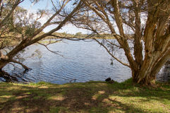 Scenic Herdsman Lake Stock Images