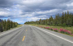 Scenic highway in Alaska Royalty Free Stock Photos