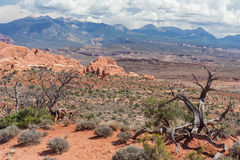 Scenic highway between Petrified Dunes and Fiery Furnace at Arches National Park Utah USA. Scenic highway between Petrified Dunes and Fiery Furnace at Arches Stock Photo
