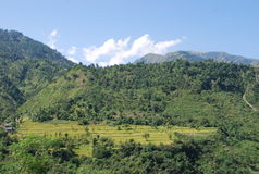 Scenic Hill. View near Dalhousie India Stock Images