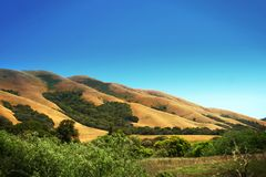 Scenic hillside Stock Photography
