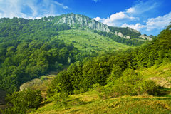 Scenic hillside landscape Royalty Free Stock Images