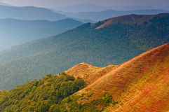 Scenic hillside of mountain. Stock Image