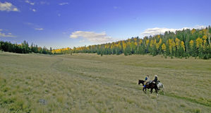 Scenic Horseback Riding Stock Photo