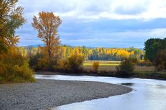 River in the fall Stock Photography