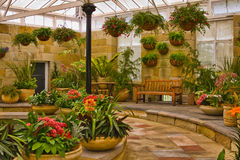 Scenic indoor garden area Stock Image