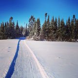 Scenic instagram of snowmobile tracks in snow Stock Images